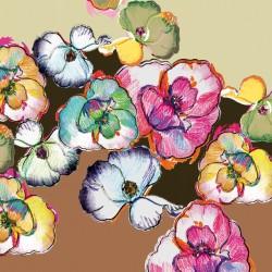 Popeline Bio Orchidées -...
